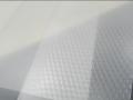 FLY-EYE lenticular sheet (1)