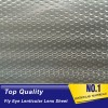 Super transparent fly eye lenticular lens sheet 3d dot film for led diffusers