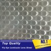 3d fly-eye plastic sheet material Spherical lenticular grating lens