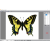 latest fly eye 3d lenticular software can make 360 3d and animation effect